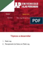 Unidad 06 - Redo Log - 2019.pdf