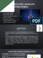 TRASTORNOS-DEL-APARATO-RESPIRATORIO.pptx