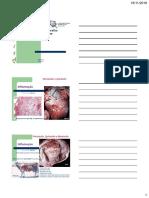 Aparelho cardiovascular%2c parte 2.pdf