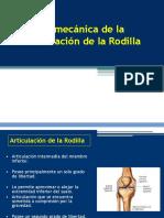 Biomec Clas 011 Rodilla