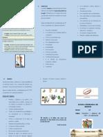 derechos-y-deberes. triptico.docx