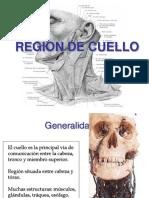 62202966-Region-de-Cuello.pdf