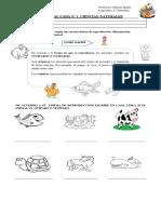 guia  animales y su reproducció-cubierta-desplazamiento-alimentación .docx
