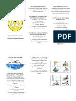 RSGM Leaflet Dhf