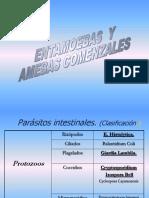Amebas San Carlos