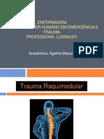 slidestraumaraquimedular-140426201039-phpapp01