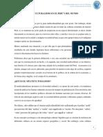 Multiculturalismo en El Perú y Del Mundo Final 0111