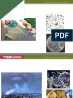 1. Panorama General de La Microbiologia