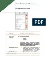 Ruta de trabajo fichaje material didactico, propuesta y defensa oral 35% área lenguaje (1)
