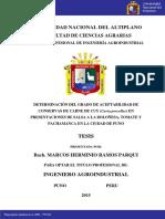 Ramos Parqui Marcos Herminio
