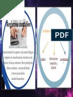 Nia 500 Definiciones Registros Contables y Lo Apropiado
