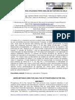 P em solo.pdf