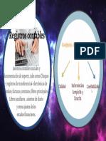 nia 500  definiciones REGISTROS CONTABLES Y LO APROPIADO.pptx