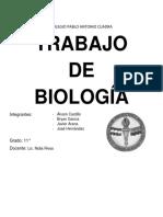 TRABAJO DE BIOLOGIA 2016