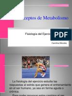 Conceptos metabólicos