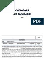 8vo Naturales PCA Y PUD.docx