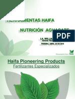 Haifa Seminario Intagri Pereira 2019
