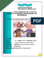Pae Adulto Mayor Canevaro 2018 -II