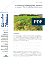 Cultivo de Ora-pro-nóbis.pdf