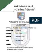 INFORME DE PRFIL DE SUELO.docx