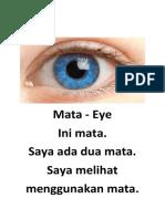 Ini mata