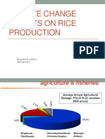 Rice and Climate Change