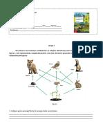 Ficha Avaliacao Ciencias 8 ano 2º periodo