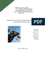 ESTRATEGIAS Y TACTICAS PARA LA DIRECCION DE ORGANIZACIONES
