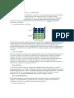 Tipos de Almacenes y Zonas Más Comunes de Un Almacén