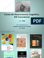 XIII-Conciencia.pdf