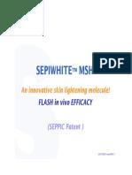 3276 Flash Efficacy SEPIWHITE MSH Gb[1]
