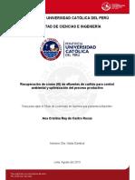 CURTIDO2.pdf