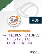 AFNOR_Guide_Transition_ISO_45001_EN_loRES.pdf