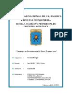 Zona de investigacion de  Puylucana.pdf