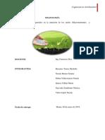 micro y macro elementos esenciales.docx