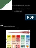 Arus2018 Translating High-Throughput Phenotyping into Genetic Gain_Figure.ppt