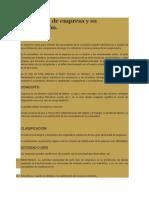 Definición de empresa y su clasificación.docx