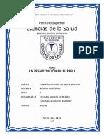 LA DESNUTRICIÓN EN EL PERÚ.docx