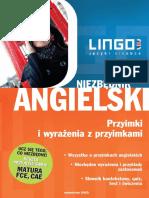Niezbędnik angielski. Przyimki i wyrażenia z przyimkami - Anna Treger.pdf