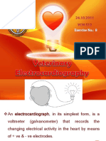 Veterinary Electrocardiography - Slide Show