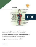 Anatomia Si Fiziologia Sistemul Circulator