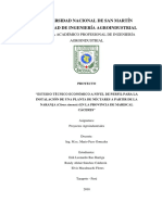 PP NECTAR DE NARANJA.docx