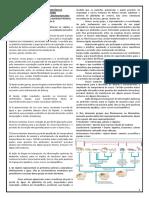 Enviando Deuterostomados_Resumo_Aula_20_Como.pdf