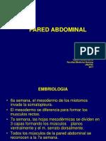 2. Pared Abdominal