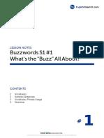BZ_S1L1_070809_eclass101.pdf