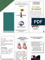 folleto bebidas alcohólicas