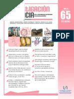 REVISTA 65.pdf