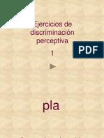 percepcion-1
