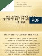 Habilidades, capacidades y destrezas en el desarrollo.pptx