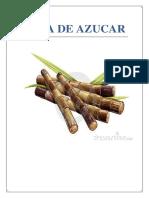 283837399-Informe-de-La-Cana-de-Azucar.docx
